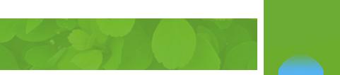 הידרופוניקה - ירוק הביתה